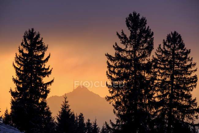 Німеччина, Баварія, Swabia, близько Вертах, Груенген, післясвітіння — стокове фото