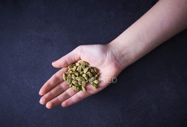 Cardamom in woman's hand — Stock Photo