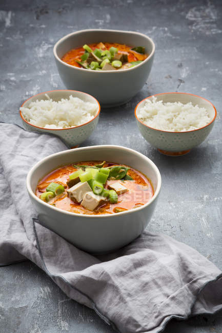 Rotes Currygericht mit geräuchertem Tofu — Stockfoto