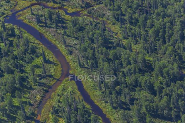 EUA, Alaska, Talkeetna: vista aérea do rio e da floresta — Fotografia de Stock