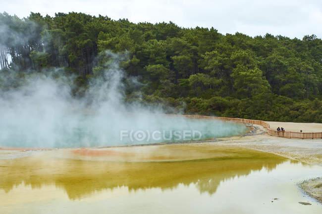 New Zealand, North Island, Wai-O-Tapu, Champagne Pool — Stock Photo