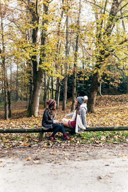 Two women relaxing in an autumnal forest — Stock Photo