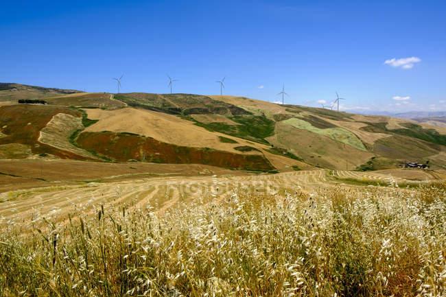 Italia, Sicilia, cerca de Corleone, campos de granos y ruedas de viento - foto de stock