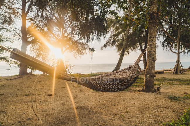 Thailand, Phi Phi Islands, Ko Phi Phi, hammock  on the beach in backlight — Stock Photo