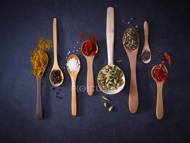 Gewürzvielfalt auf Holzlöffeln — Stockfoto