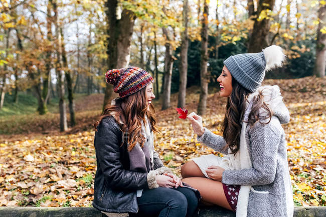 Due belle donne si divertono in una foresta autunnale — Foto stock