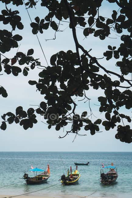 Thailand, Phuket, moored boats at seafront — Stock Photo