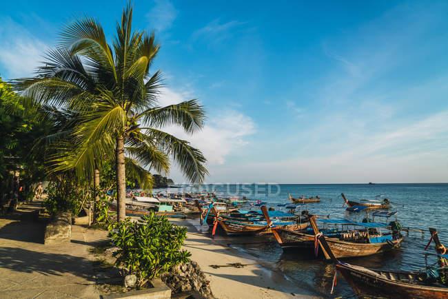 Tailândia, Phi Phi Islands, Ko Phi Phi, ancorado barcos de cauda longa na praia — Fotografia de Stock