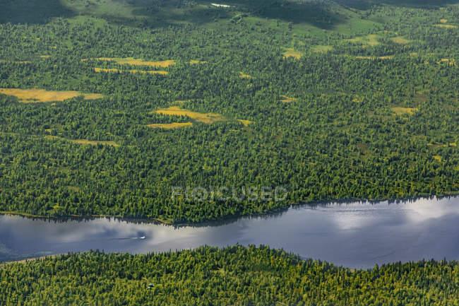 EUA, Alaska, Talkeetna: vista aérea da paisagem do rio e da floresta — Fotografia de Stock