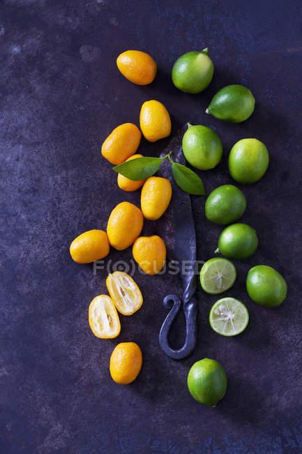 Fresh whole and halved limes and kumquats on dark grunge background — Stock Photo