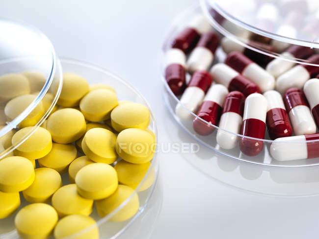 Primer plano de los medicamentos en placas de Petri - foto de stock