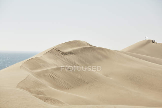 Africa, Namibia, Namib-Naukluft National Park, Namib desert, desert dunes and atlantic — Stockfoto