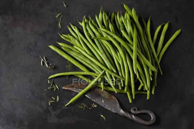 Игла бобы, sayory и старый нож на темном металле — стоковое фото