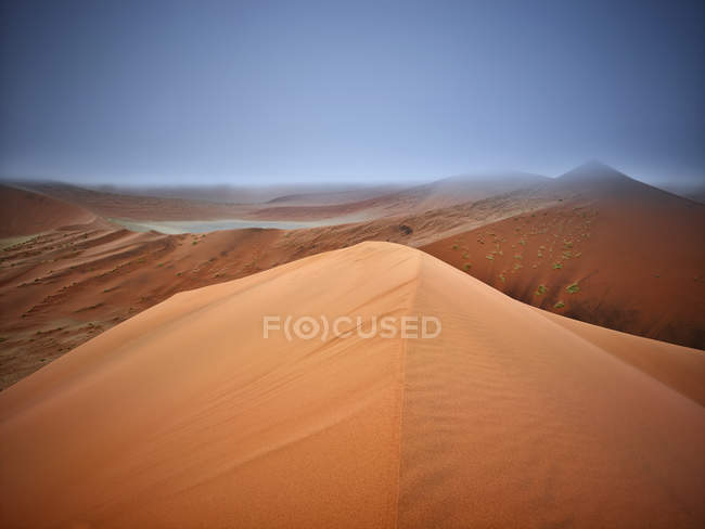 Africa, Namibia, Namib-Naukluft National Park, Namib desert, desert dunes and fog — Stock Photo