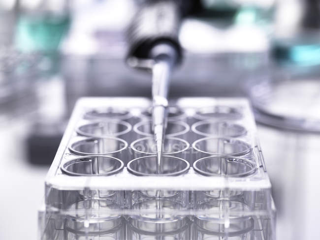 Pipette lying on a multiwell plate — Stock Photo