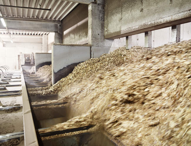Wood chips falling in an conveyor belt — Stock Photo