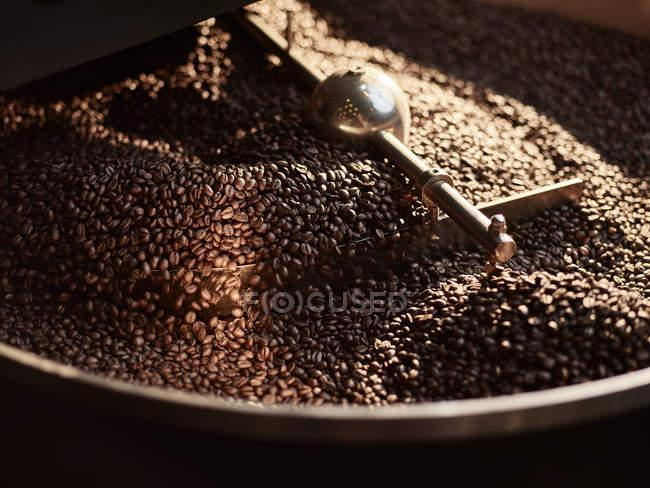 Granos de café tostados en cilindro de refrigeración - foto de stock