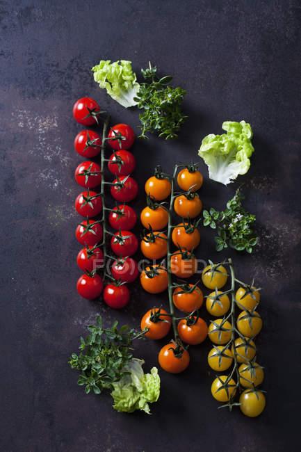 Свежие цветные помидоры черри и листья салата на темном фоне гранжа — стоковое фото