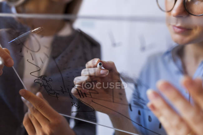 Female architects working on a project, holding outline — Stock Photo