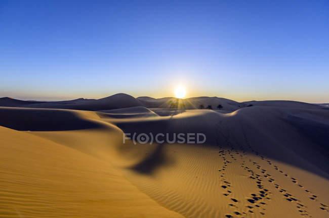 VAE, Abu Dhabi, Liwa Desert at sunrise - foto de stock