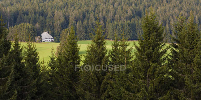 Germany, Baden-Wurttemberg, Black Forest, Black Forest farmhouse near Thurner — Stock Photo