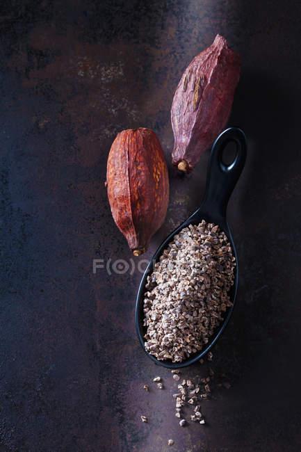 Cuchara de puntas de cacao crudas trituradas y vainas de cacao sobre metal oxidado - foto de stock
