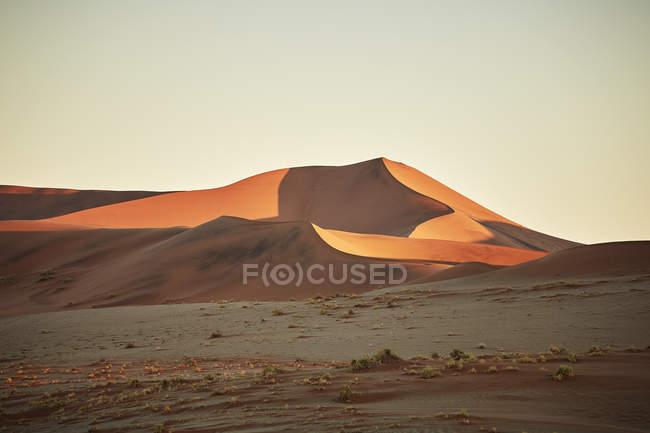 Африка, Намибия, Национальный парк Намиб-Науклуфт, пустыня Намиб, пустынные дюны — стоковое фото