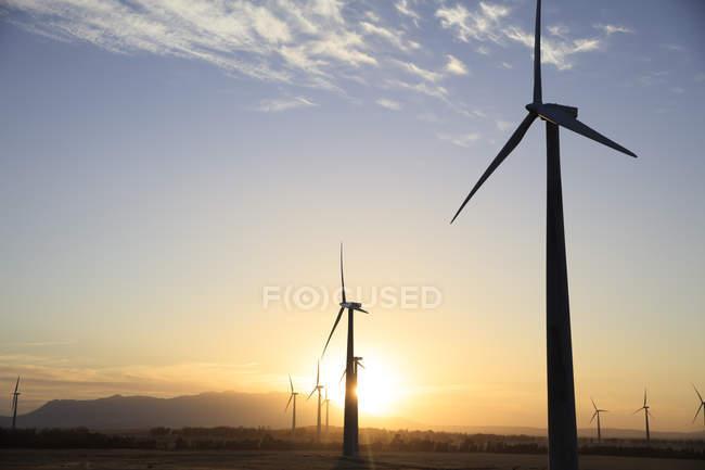 Ветровая электростанция на закате — стоковое фото