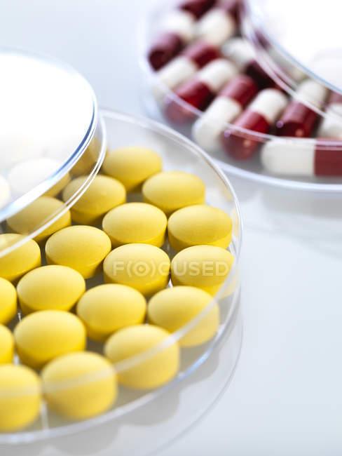 Medicamentos en placas de Petri - foto de stock
