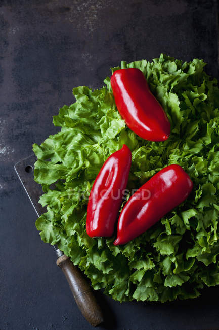 Fresh red peppers on salad leaves on dark grunge background — Stock Photo