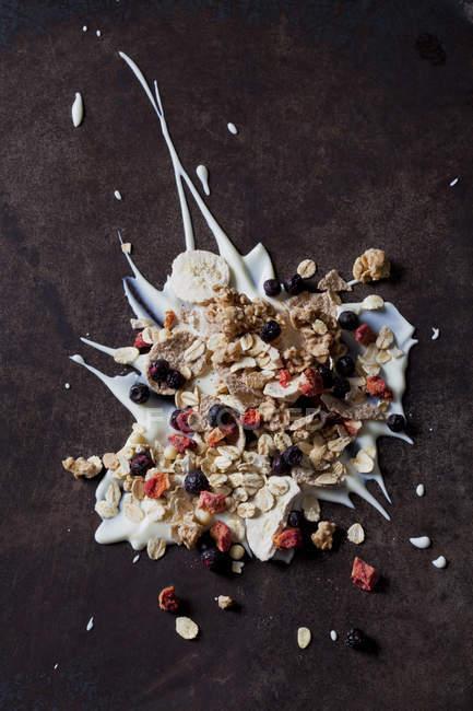 Fruchtmüsli mit getrockneten Früchten auf Joghurt-Spritzer — Stockfoto