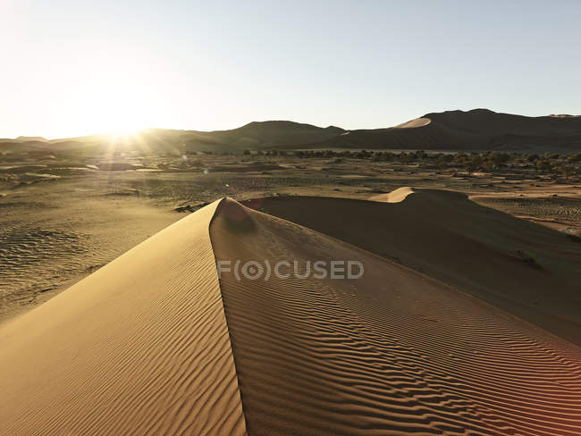 Africa, Namibia, Namib-Naukluft National Park, Namib desert, desert dunes — Stock Photo