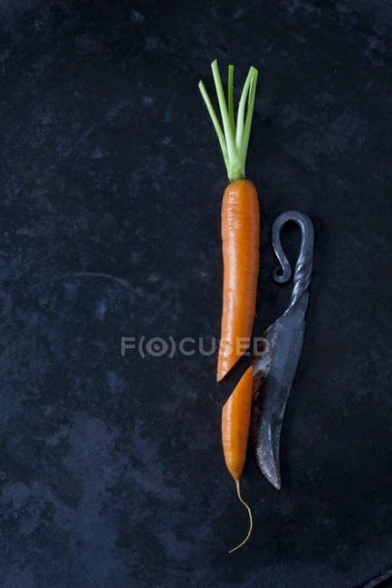 Cenoura cortada uma faca velha na terra escura — Fotografia de Stock