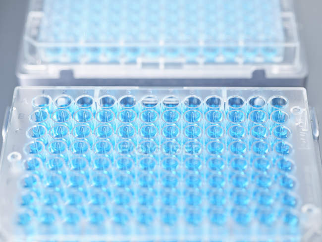 Close up of Lab equipment in lab — Stock Photo
