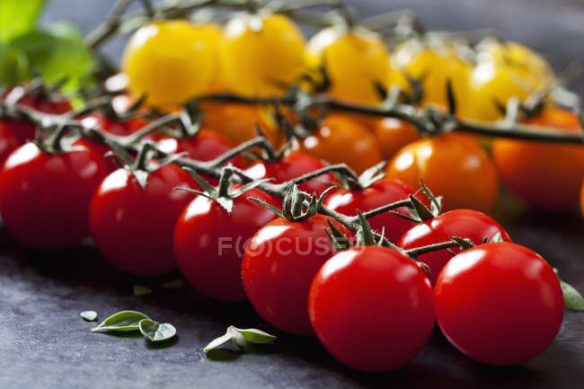 Bunch of fresh red cherry tomatoes on grey surface — Stock Photo