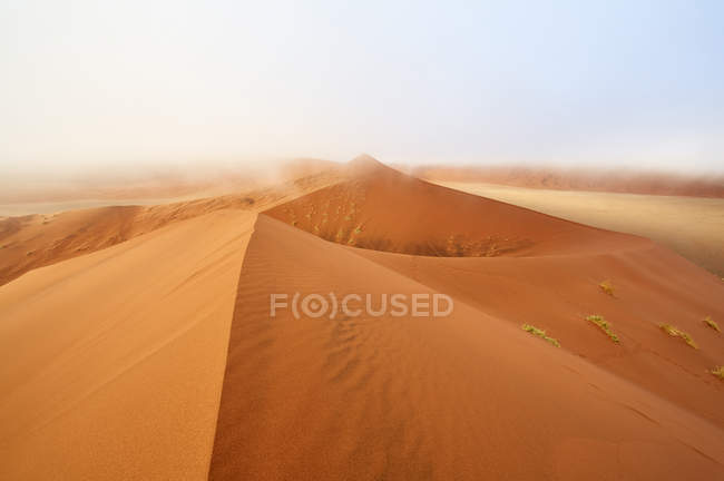 Namibia, Namib Desert, Sossusvlei, Namib-Naukluft National Park, Dune 45 and morning fog — Stock Photo