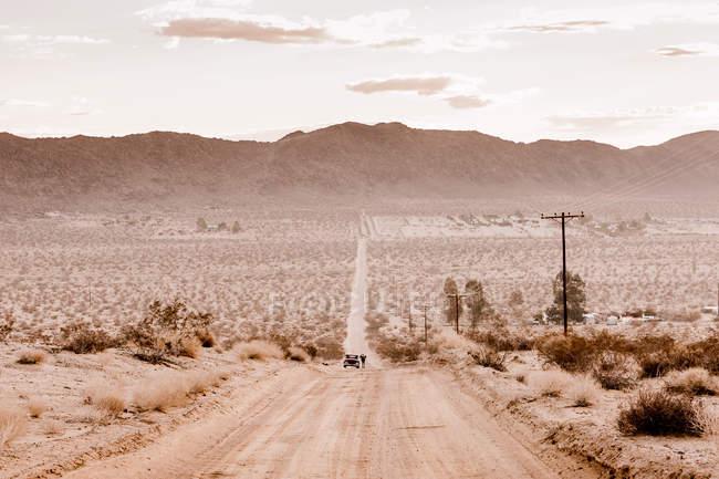 EE.UU., California, Joshua Tree, una calle a través del desierto de Joshua Tree - foto de stock