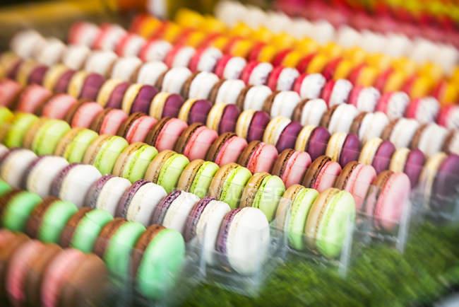 Luminoso amaretti gustosi in file — Foto stock