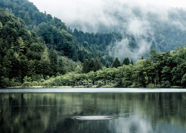 Áustria, Estado de Salzburgo, Salzkammergut, St. Gilgen, Lago Krotensee, nevoeiro — Fotografia de Stock