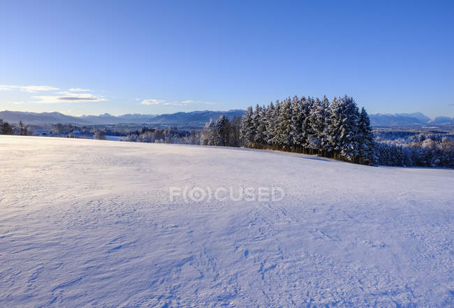 Germany, Bavaria, Upper Bavaria, Alpine foothills, Toelzer Land, View from Peretshofener Hoehe in winter — Stock Photo