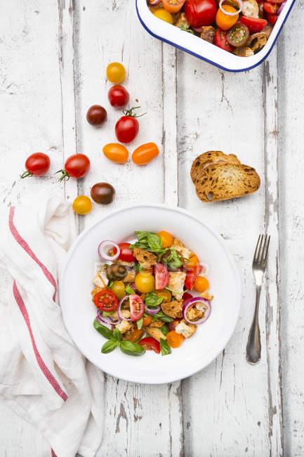 Panzanella aus geröstetem Ciabatta, Rucola, roten Zwiebeln, Tomaten und Basilikum — Stockfoto
