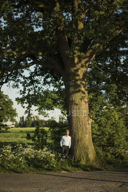 Homme d'affaires appuyé sur l'arbre le jour — Photo de stock