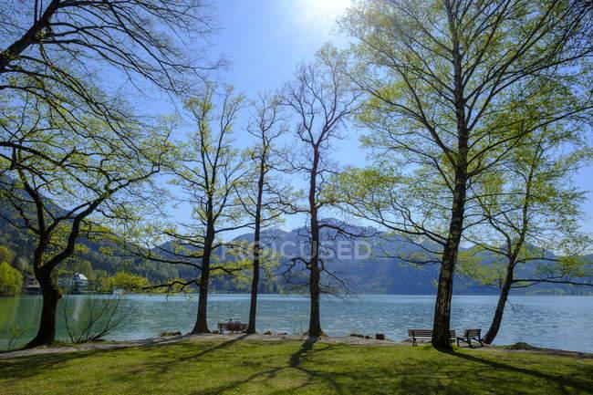 Germany, Bavaria, Upper Bavaria, Lake Kochelsee, View to Herzogstand and Heimgarten — Fotografia de Stock