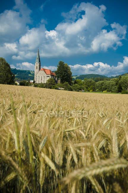 Austria, San Oswald, Iglesia de San Oswald - foto de stock