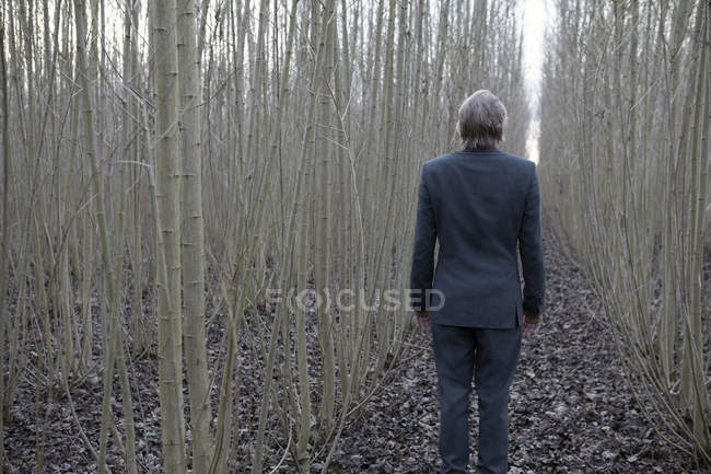 Businessman standing amidst willows — Stock Photo