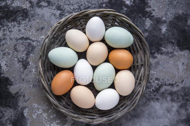 Различные яйца, белые, коричневые, светло-коричневые и зеленые — стоковое фото