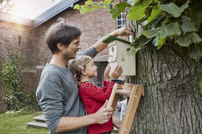 Батько і дочка висить гніздо коробка в саду — стокове фото