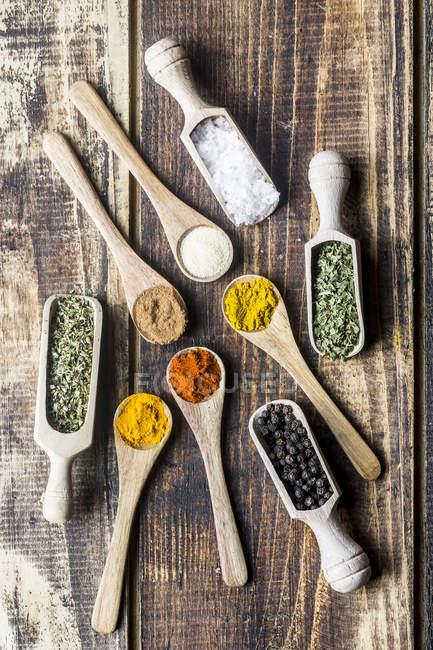 Spicies, curry, piment, cannelle, curcuma, ail, persil, origan, sel et poivre sur cuillères en bois — Photo de stock