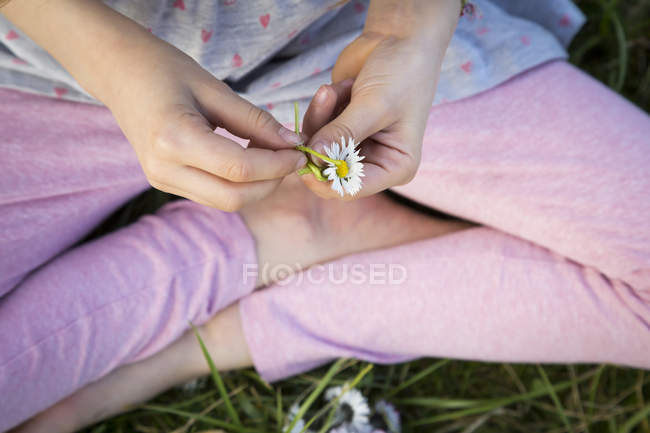 Hands of l ittle girl sitting on a meadow holding daisy, close-up — Stock Photo