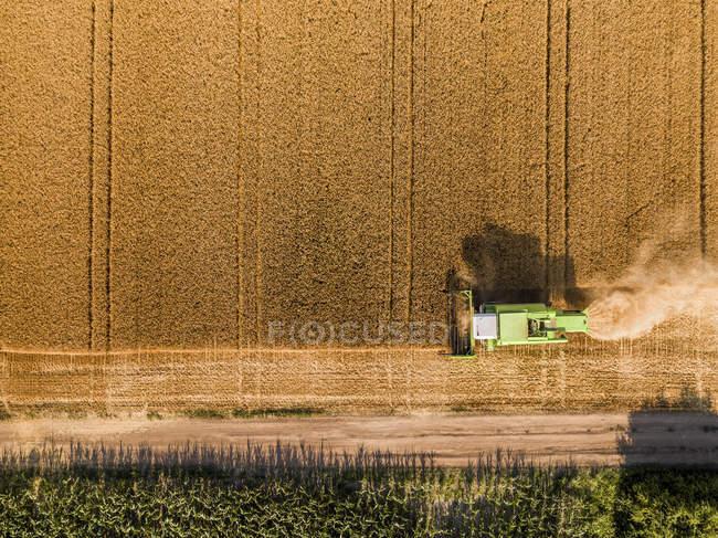 Serbien, Vojvodina. Mähdrescher auf einem Weizenfeld, Luftaufnahme — Stockfoto